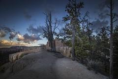 Canyon Rim Trail At Dusk (Brad Prudhon) Tags: 2018 bryce brycecanyon hoodoos nationalpark october utah landscape scenic