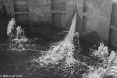 IMGP9349 (Brian H Whittle) Tags: blackwhite leedsliverpoolcanal rufford canal