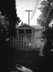 San Jose (bior) Tags: fujifilmga645zi ga645zi 6x45cm ilfordfilm ilford sanjose mediumformat 120 yard panfplus panf driveway whitepicketfence garage