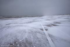 Kijkduin richting Scheveningen (Pieter Musterd) Tags: sneeuw winter strand zee koud pietermusterd musterd canon pmusterdziggonl nederland holland nl canon5dmarkii canon5d denhaag 'sgravenhage thehague lahaye kijkduin