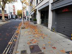 20181110T14-10-51Z (fitzrovialitter) Tags: bloomsburyward england fitzrovia gbr geo:lat=5151890000 geo:lon=013425000 geotagged unitedkingdom peterfoster fitzrovialitter city camden westminster streets urban street environment london streetphotography documentary authenticstreet reportage photojournalism editorial daybyday journal diary captureone olympusem1markii mzuiko 1240mmpro microfourthirds mft m43 μ43 μft ultragpslogger geosetter exiftool rubbish litter dumping flytipping trash garbage