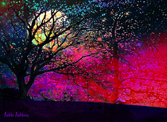 Night Comes (brillianthues) Tags: moon trees night colorful collage photography photmanuplation photoshop