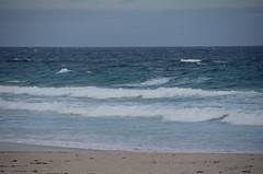 White caps from Asilomar (afagen) Tags: california pacificgrove asilomarstatebeach montereypeninsula asilomar beach pacificocean ocean