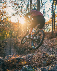 Sunny Biking Session (TPVISUAL) Tags: bike mtb mountainbike winter fall autumncolor autumncolors autumn goldenhour sunshine specialized nature forest woods freeride downhill