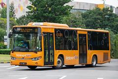 Sentosa Volvo B8RLE (Liannex) (SBS3449X) Tags: bus sentosa volvo b8rle liannex