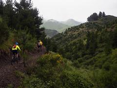 Barney Rubble (Wozza_NZ) Tags: barneyrubble singletrack weather rain cloud clouds bike biking mountainbiking mtb riding riders rivenrock mountholdsworth mtholdsworth carterton wairarapa nz newzealand wet