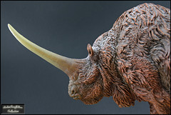 Elasmotherium  ( 1:20 ) (RobinGoodfellow_(m)) Tags: michael kampa sean cooper urzeitshop elasmotherium 120 sculpted painted megafauna mammal mammals prehistoric ancient ice age cenozoic rhino horn lon big