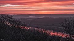 route des crêtes - levé du soleil DxOFP DSCF2523 (mich53 - thank you for your comments and 6M view) Tags: morning matin ciel orange seine paysage france xt2 xf1655mmf28rlmwr colors couleurs larocheguyon valdoise brume