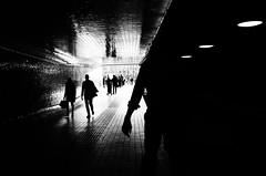 more black (Gerrit-Jan Visser) Tags: amsterdam pedestrians shadow streetphotography tunnel sunlight central station city urban reflections walk darkness lowkey black