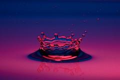 Water-Crown (CHWVB) Tags: wassertropfen splash waterdrop wasser water tropfenfotografie macro hochgeschwimdigkeit highspeed drop tropfen krone crown