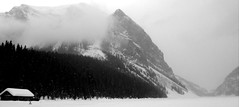 Arctic Air Mass ... Deep Freeze Continues (Mr. Happy Face - Peace :)) Tags: lakelouise fairmount hotel chateau 25years snow albertabound alberta canada banffpark cans2s snowing snowcaps mountains scenery landscape art2019