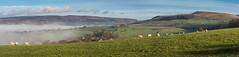 The view from Cemetery Road (Maria-H) Tags: panorama hills mist glossop derbyshire peakdistrict highpeak pennines panasonic 1235 olympus omdem1markii
