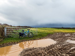 2019 Bike 180, Ride 16, 17th March. (Photopedaler) Tags: 2019bike180 cornishcycling bicycle farmland wetweatherriding weather darkskies puddles