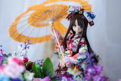 IMG_3629 (kwokt59) Tags: azone azonejp doll 16 pureneemo sahras mode yuzuha lolita dress sewing dollclothes