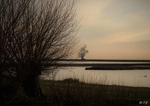 exposure Lelystad