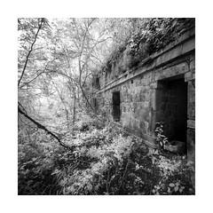 Xkipche (Sandra Herber) Tags: infrared maya mayan mexico ruins xkipche yucatan