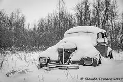 CT Boneyard-2 (Claude Tomaro) Tags: boneyard cardinal ontario canada claude tomaro meetup shutterbug classic car winter snow