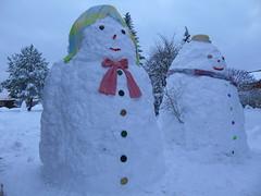 Snowmen Invade Bialowieza, January 2019 (Tamara Tarasiewicz) Tags: snowman snowmen january białowieża bialowieza winter zima styczen 2019 polskaandwinter poland easterneurope podlasie