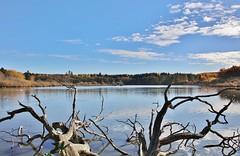 Autumn at the Lake (Hugo von Schreck) Tags: hugovonschreck lake see germany europe grebenhain hessen deutschland canoneos5dsr tamron28300mmf3563divcpzda010