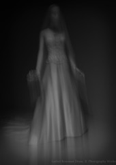 veil (Luther Roseman Dease, II) Tags: imagery impression monochrome chiaroscuro light form abstract motion movement blackwhite bw white dress veil artistry design conceptual texture noiretblanc negroyblancofotografie fineartphotography fotografie lace mood