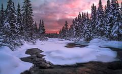 Rendez-vous réussi! (martinmenard757) Tags: martin menard rendezvous lanaudiere quebec d850 canada neige snow