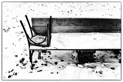 chair and bench (Pomo photos) Tags: winter snow coach chair leaves leaf wood blackandwhite bw monochrome mono abstract leicax1 black mood moody cold street stilllife bench leg legs footprint lost decay abandoned contrast