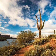 Saguaro Lake (gypsy.pics) Tags: desert hiking weather clouds sky outside cactus trails landscape nature lake water