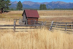 A Fence for your Friday (Eclectic Jack) Tags: eastern oregon trip october 2018 rural agriculture farm farming autumn fall mountains irrigation abandoned house structure home