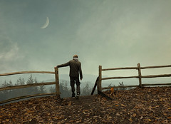 dawn is breaking (Mattijn) Tags: fence forest moon cat ginger stairs leaves autumn photomontage