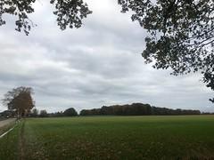 haarlerbergloop 10 km (1)