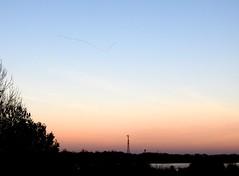 the flight of cranes today in the sunset (BrigitteE1) Tags: kranich cranes grusgrus flight sunset germany deutschland kraniche