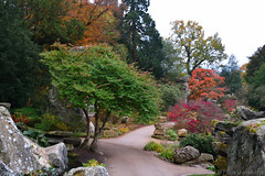 Autumn Trees (Bri_J) Tags: chatsworthhousegardens bakewell derbyshire uk chatsworthhouse gardens chatsworth statelyhome nikon d7500 autumn fall trees rockery