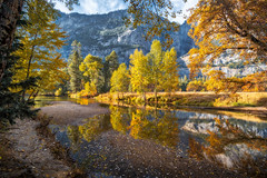 River Realm (Yaecker Photography) Tags: autumn autumn2018 nationalpark yosemitenationalpark fall fallcolors fallfoliage river riverbank mercedriver trees colorful colorsofday park