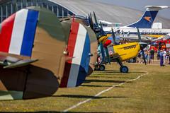 flight line walk Flying Legends Airshow (WP_RAW) Tags: