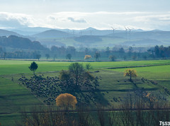 Herbst in Hessen (todde.sin ...expect the unexpected...) Tags: natur nature herbst fall autumn landscape landschaft