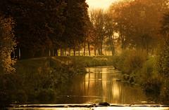 ...autumn blues... (shallowcreek) Tags: herbst autumn landschaft landscape fluss river farben colors baum tree gras wiese meadow fantasy