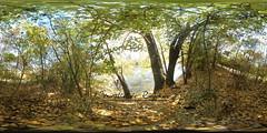 Herbst (Ventsislav Raykov) Tags: treffurt werraaue thüringen wartburgkreis deutschland werra