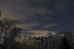 Racing Slowly By (Deepgreen2009) Tags: cloud scudding racing slowly night dark sky stars trees garden home weather windy