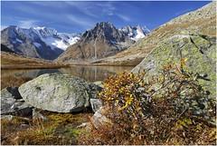 Märjela (Tjaldur66) Tags: alpine mountains moor fall autumn rocks birch peaks glacier autumncolours lake mountainlake outdoor hiking switzerland swissalps wallis valais