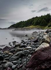 Morning mist, Bare Need (rick miller foto) Tags: flickrunitedaward 80d canon landscape aftertherain eastcoast atlantic seascape morning mist bareneed shoreline newfoundland bayroberts