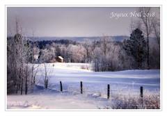 Joyeux Noël 2018 (gaudreaultnormand) Tags: 30 canada hiver joyeuxnoël quebec saguenay winter arbre neige ciel route champ forêt parc