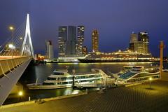 Abendlichter in Rotterdam (ploh1_im OFF) Tags: rotterdam niederlande skyline wolkenkratzer erasmusbrücke nachtaufnahme hochhäuser sehenswürdigkeit wahrzeichen langzeitbelichtung beleuchtet lichter blauestunde wilhelminapier stadtansicht schiff