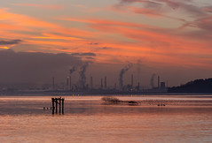 Stanlow Sunrise: 2nd January 2019 (Rob Pitt) Tags: easthamferry sunrise stanlow refinery river mersey canon 70200 f4 l sony a7rii