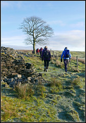 Walking The Rossendale Way (stephen dutch BDPS) Tags: winter frost walking rambling exercise outdoor countryside granevalley rossendaleway stone ruin