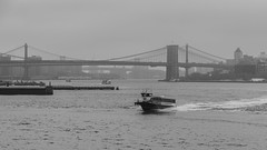 The East River on a wintry January morning (jmfuscophotos) Tags: brooklyn landscape newyorkstate urban maritime manhattan marine nyc newyorkcity newyork eastriver manhattanbridge ny statenislandferry williamsburgbridge brooklynbridge