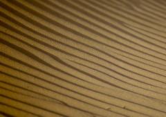 Waves On A Sand Dune, Marib Desert,  Yemen (Eric Lafforgue) Tags: arabia arabiafelix arabianpeninsula colourpicture day desert dune goldencolour grain horizontal nopeople placeofinterest sable sand splendid stripe tigrine yellowcolour yemen mg2743 marib