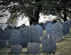 I still love you, after all these years. Llanfachreth. (alwenajones) Tags: llanfachreth meirionethgwyneddpeace ancestry grave