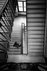 (Roberto Spagnoli) Tags: staircase window people biancoenero blackandwhite bw geometries