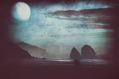 nightwings (1crzqbn) Tags: moon seascape ocean sea birds fog nature outside people sliderssunday blue 1crzqbn