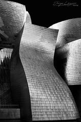 Museo Guggenheim Bilbao (www.jorgelazaro.es) Tags: fineart bilbao arquitectura blancoynegro museo bizkaia guggenheim bilbo euskadi españa es